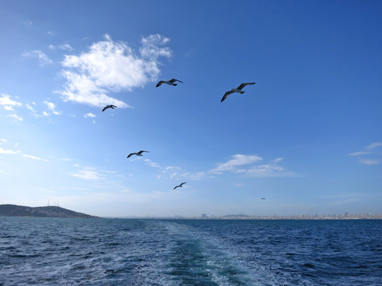 Паром на Принцевы острова отходит от пристани Кабаташ