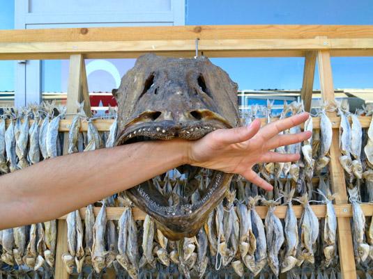 Сушеная рыба на Бююкаде
