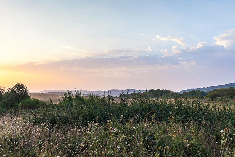 Пейзажи экодеревни #Sunsurfers в Грузии